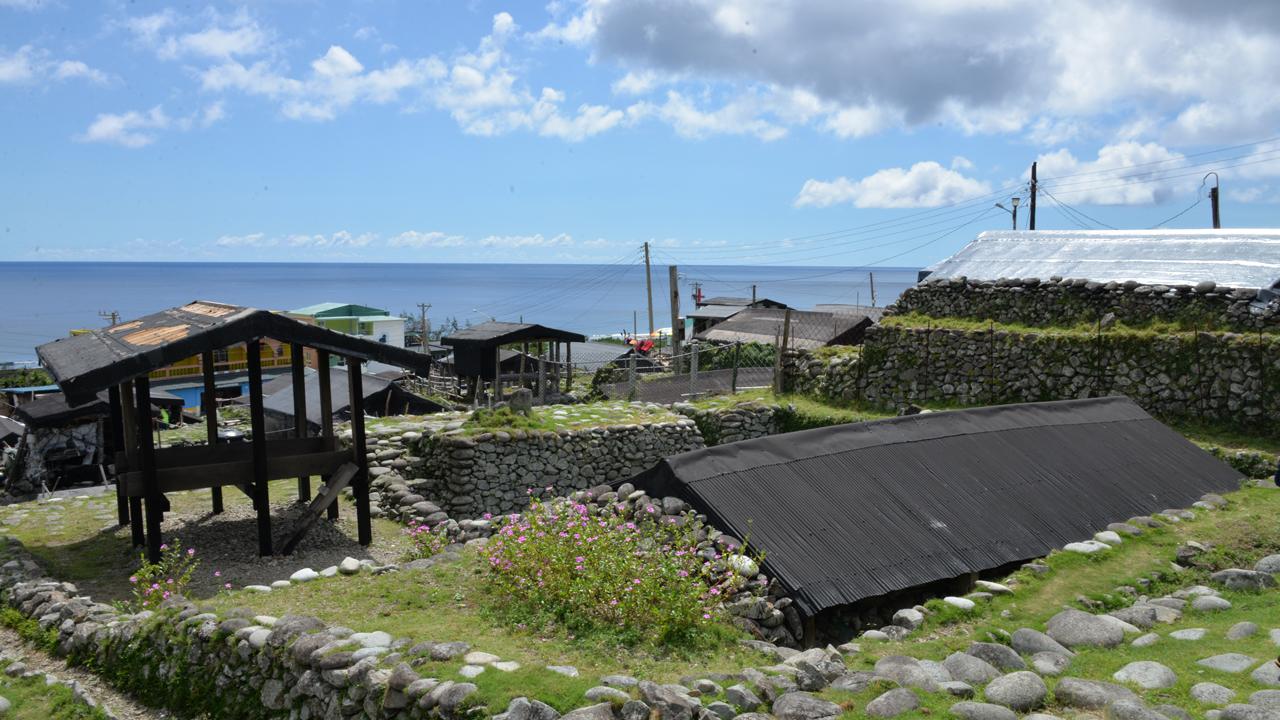 明道蘭嶼海蛇保育計畫 | Orchid Island●蘭嶼●人之島