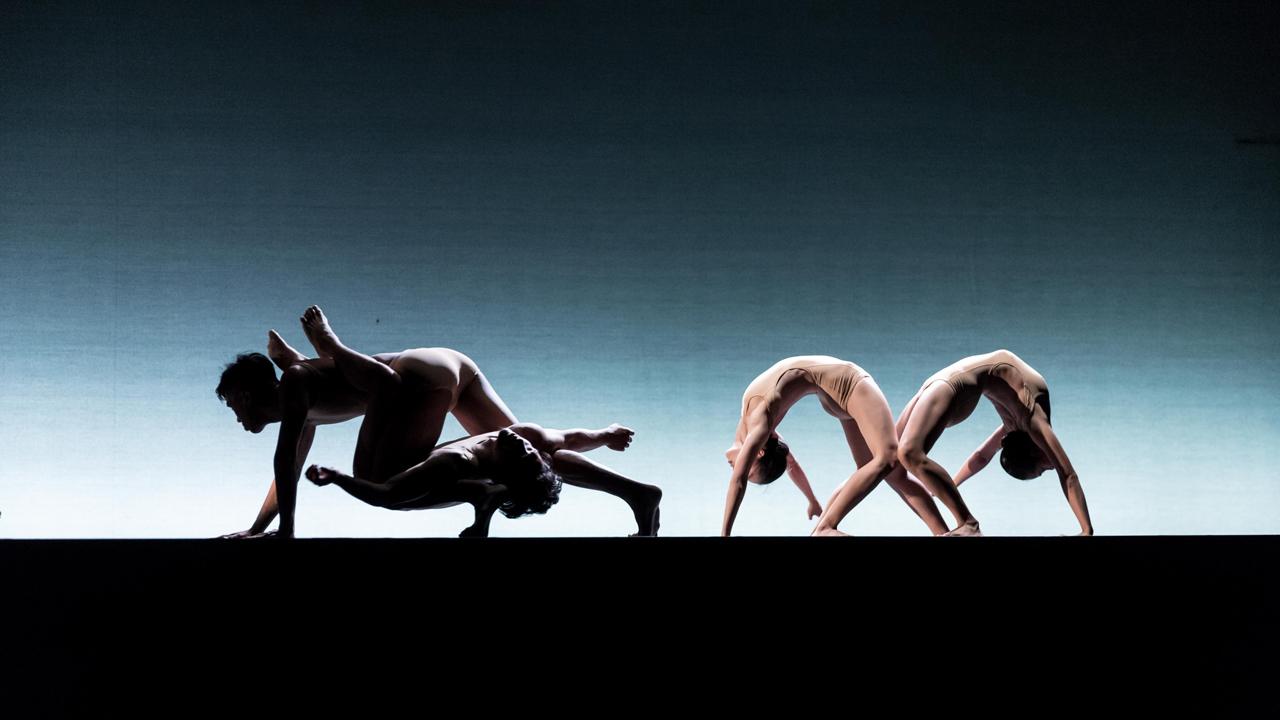 【文化長廊】從臺灣出發,跳舞吧! ──訪臺北藝術大學舞蹈學院何曉玫院長
